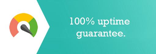 Hosting Uptime Guarantee