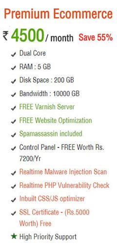 VPS Premium E-Commerce